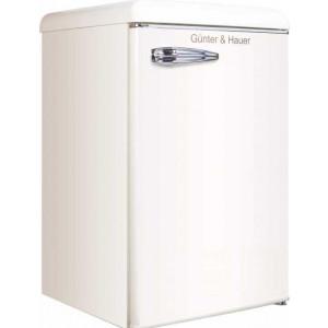 Компактный отдельно стоящий холодильник Gunter & Hauer FN 109 B